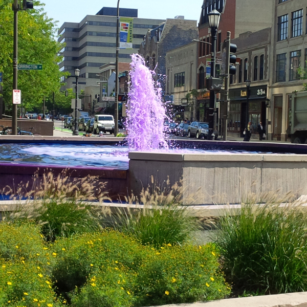 Fountain-Square-Purple